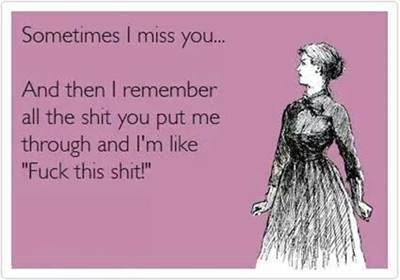 """45 Cute I Miss You Memes """"Sometimes I miss you… and then I remember all the shit you put me through and I'm like """"Fuck this shit!"""""""""""