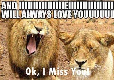 "45 Cute I Miss You Memes ""And I will always love youuuuuuu ok, I miss you!"""