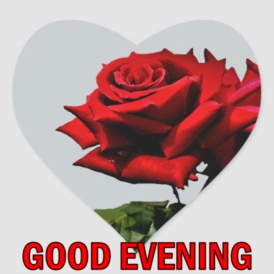 beautiful evening images